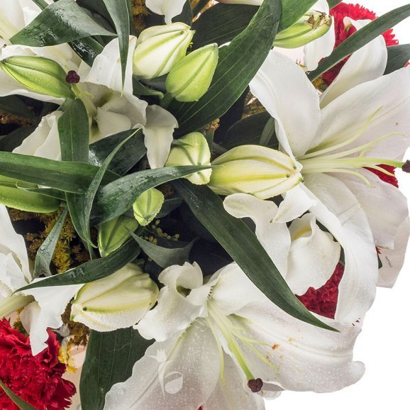2 White Lilies and 12 Red Carnations in Zoomed in View