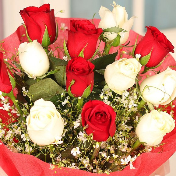 12 red and white roses bunch in zoomed view