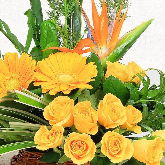 Orange and Yellow Blooms in Basket in Zoomed View