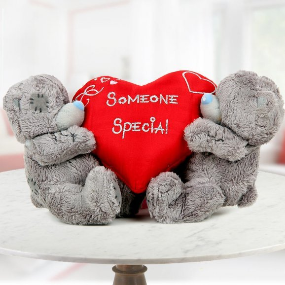 A heart-shaped Someone Special quoted cushion with 6 inch teddy couple
