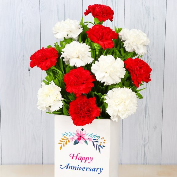 Bunch of 12 Mixed Carnations for Anniversary with Closed View