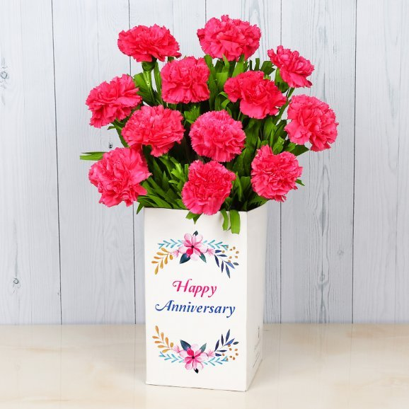12 Pink Carnations Bunch for Anniversary