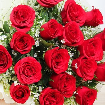 24 red roses Bunch in Zoomed View