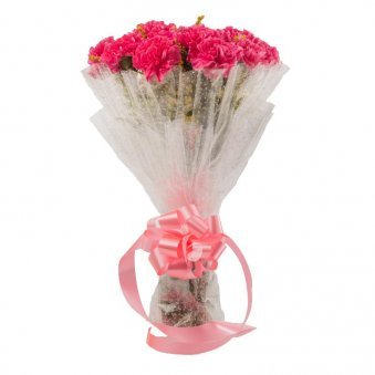 15 Pink carnations with Front View