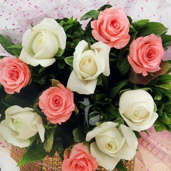 Top view of 5 pink and 5 white roses bouquet - A product of PrecioPrecious N Perfect Combo