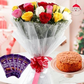 refreshing bunch of 12 Mixed Color Roses with 5 units of Dairy Milk Chocolates and 1/2 kg Plum Cake for Christmas