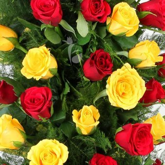 50 Red Roses and 50 Yellow Roses Arrangement in Zoomed View