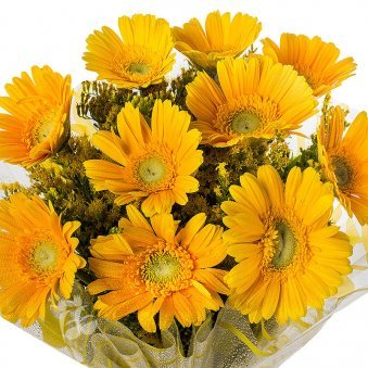 Image 2 of 10 Yellow Gerberas with Top View