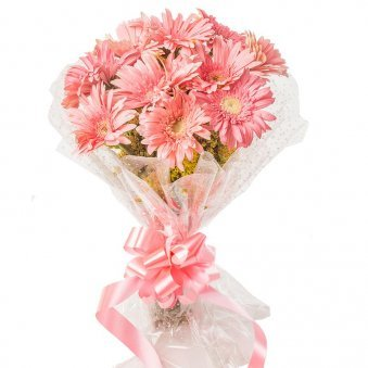 10 Pink Gerberas Bunch with Front View