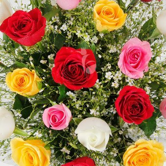 Zoom in view of 12 mix-coloured Roses - A gift in Nuts and Roses Combo