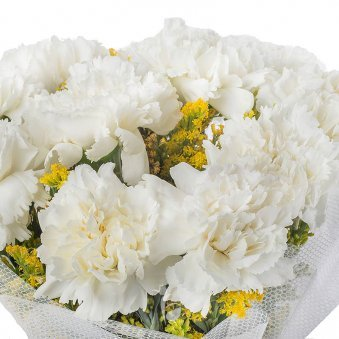 15 White Carnations with Zoomed View