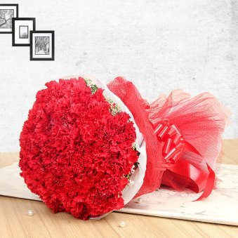 20 Red Carnations in Horizontal View
