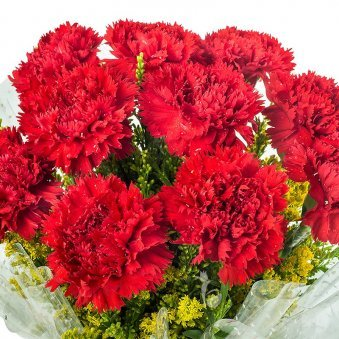 10 Red Carnations with Top View