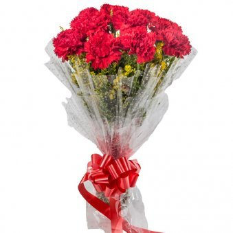 10 Red Carnations with Closed View