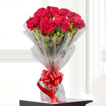 10 Red Carnations