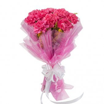 10 Pink Carnations with Beautiful Packaging