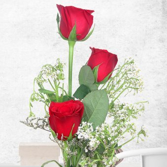 3 Red Roses with Zoomed View
