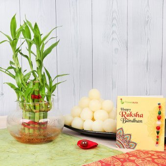 Rakhi with Two Layered Lucky Bamboo and One Kg Rasgulla