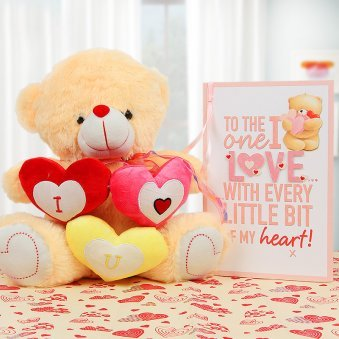 A Beautiful Teddy and a Greeting Card Combo