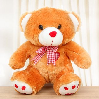 A brown teddy - Third gift of Endearingly Yours