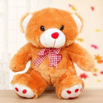 Teddy gift in Feel My Love