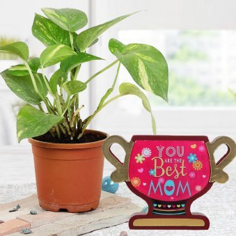 """Combo of Green Pothos and """"You Are The Best Mom"""" Trophy"""