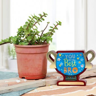 Combo of Portulacaria Jade and You Are The Best Bro Trophy