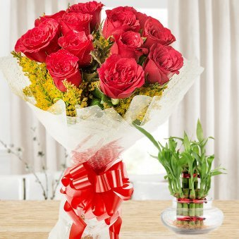 Love And Luck Hamper - Combo of bunch of 12 red Roses and 2 layer bamboo plant