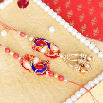 Harmonious Wishes Rakhi