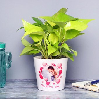 Personalised Love Money Plant