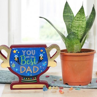 Combo of Sansevieria and You Are The Best Dad Trophy