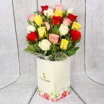 20 Mixed Color Roses